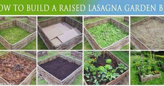healthy sustainable living  youtried  raised lasagna