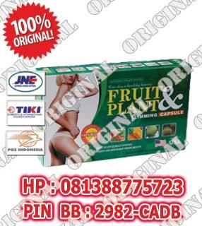 pelangsing badan, fruit plant, obat pelangsing, obat pelangsing badan,