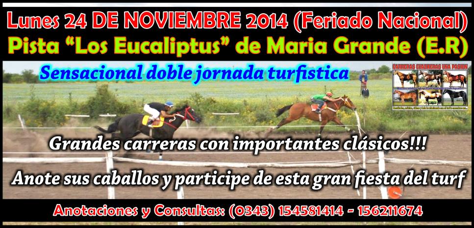 MARIA GRANDE - REUNION 24.11.14