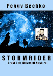 Stormrider! - 5 Star Review on Amazon