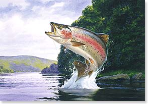 Help Trout Unlimited