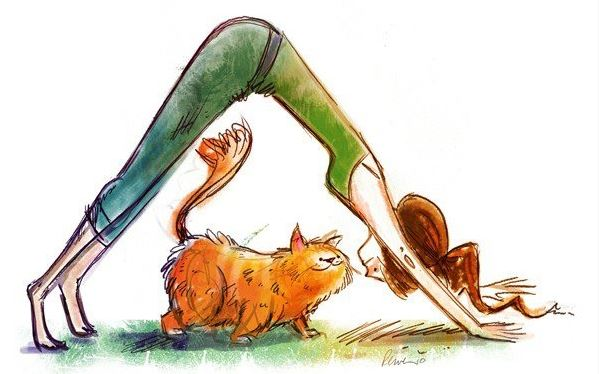 $7 Yoga Beginners Yoga<br>Wesley UMC<br>3515 Helena Ave<br>Nederland, Tx