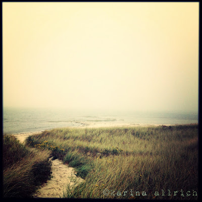 Autumn at Skaket Beach, Cape Cod by Karina Allrich