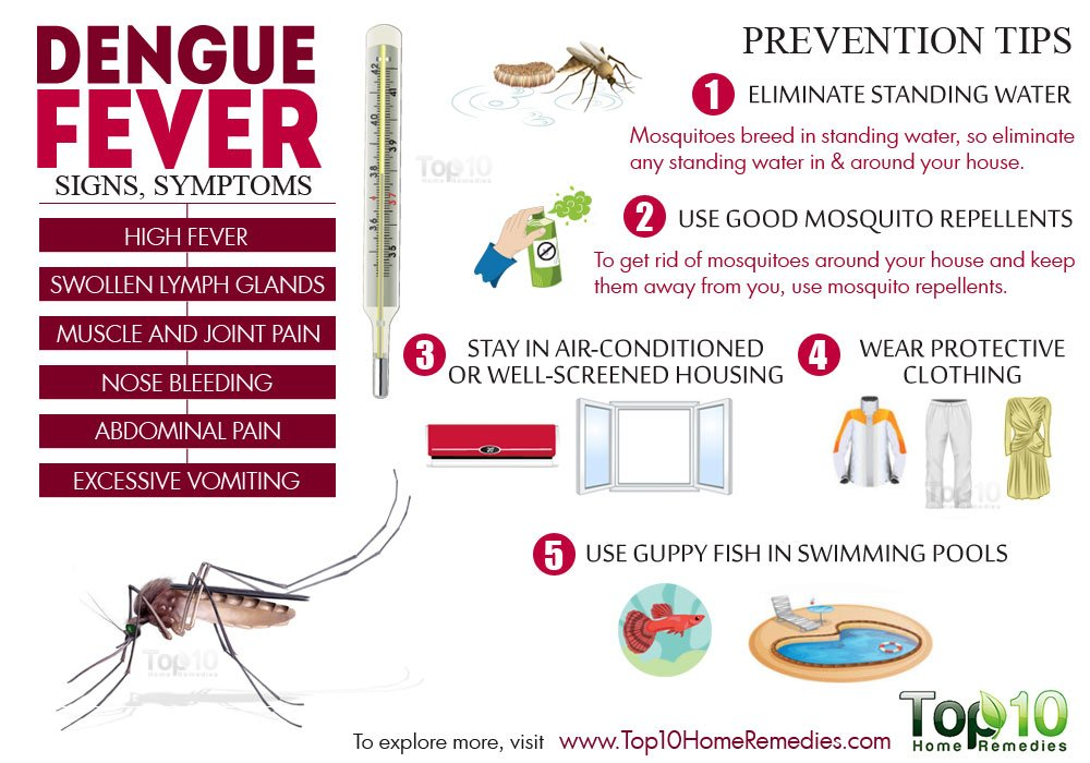 images How to Avoid Mosquito Bites