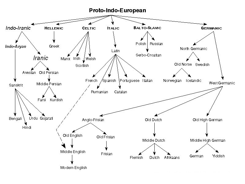 World Anthropology The IndoEuropean Language Family - Language chart of the world