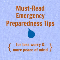 emergency preparedness tips, how to prepare for natural disasters like Hurricane Sandy