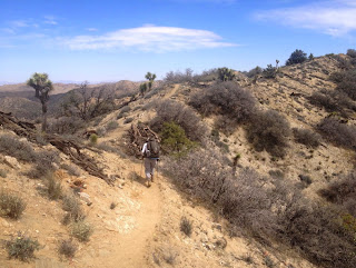 Approaching the saddle east of highpoint 5195' on Panorama Loop Trail, Joshua Tree National Park