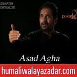 http://www.shiavideoshd.com/2015/07/sher-e-khuda-noha-by-asad-agha-gham-e.html
