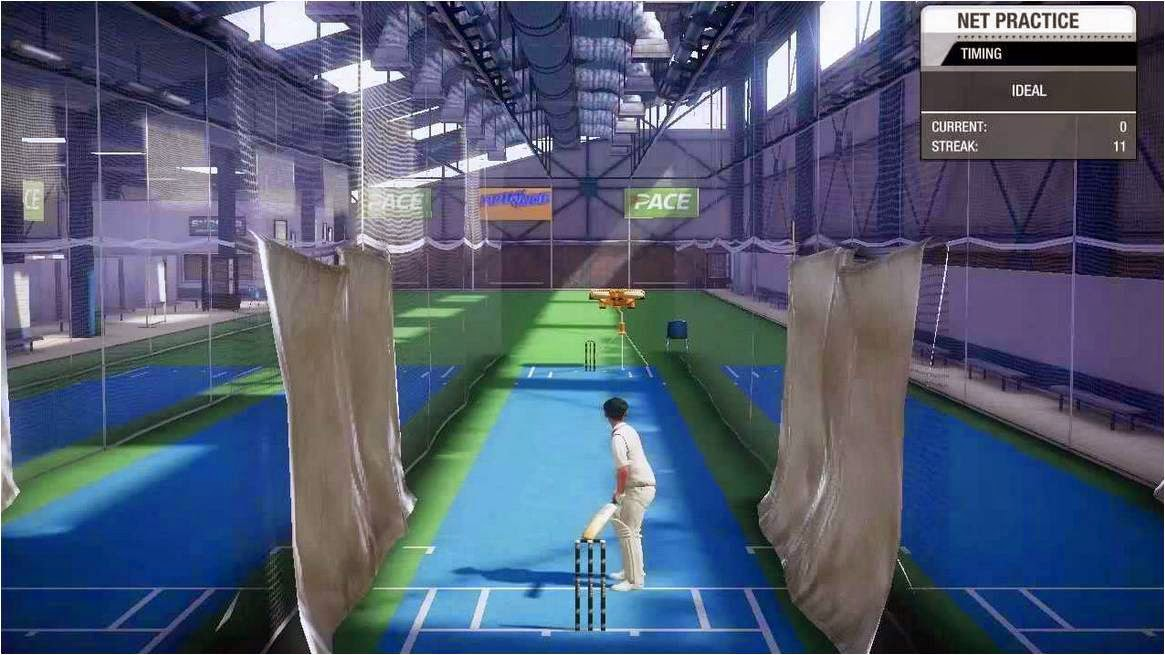 Don Bradman Cricket 14 System Requirements: Recommended