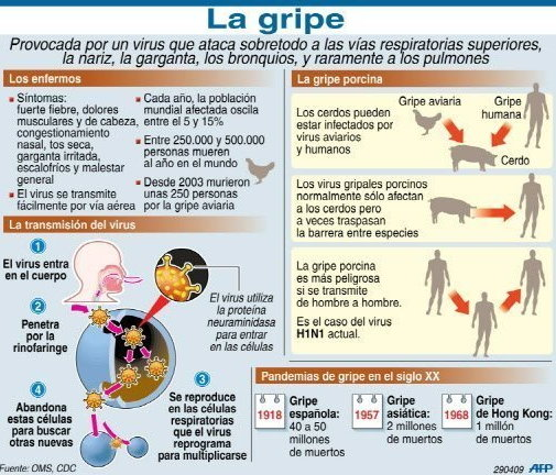 Transmision De La Gripe