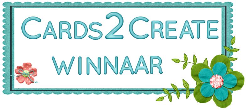 Prijs gewonnen bij Cards2Create