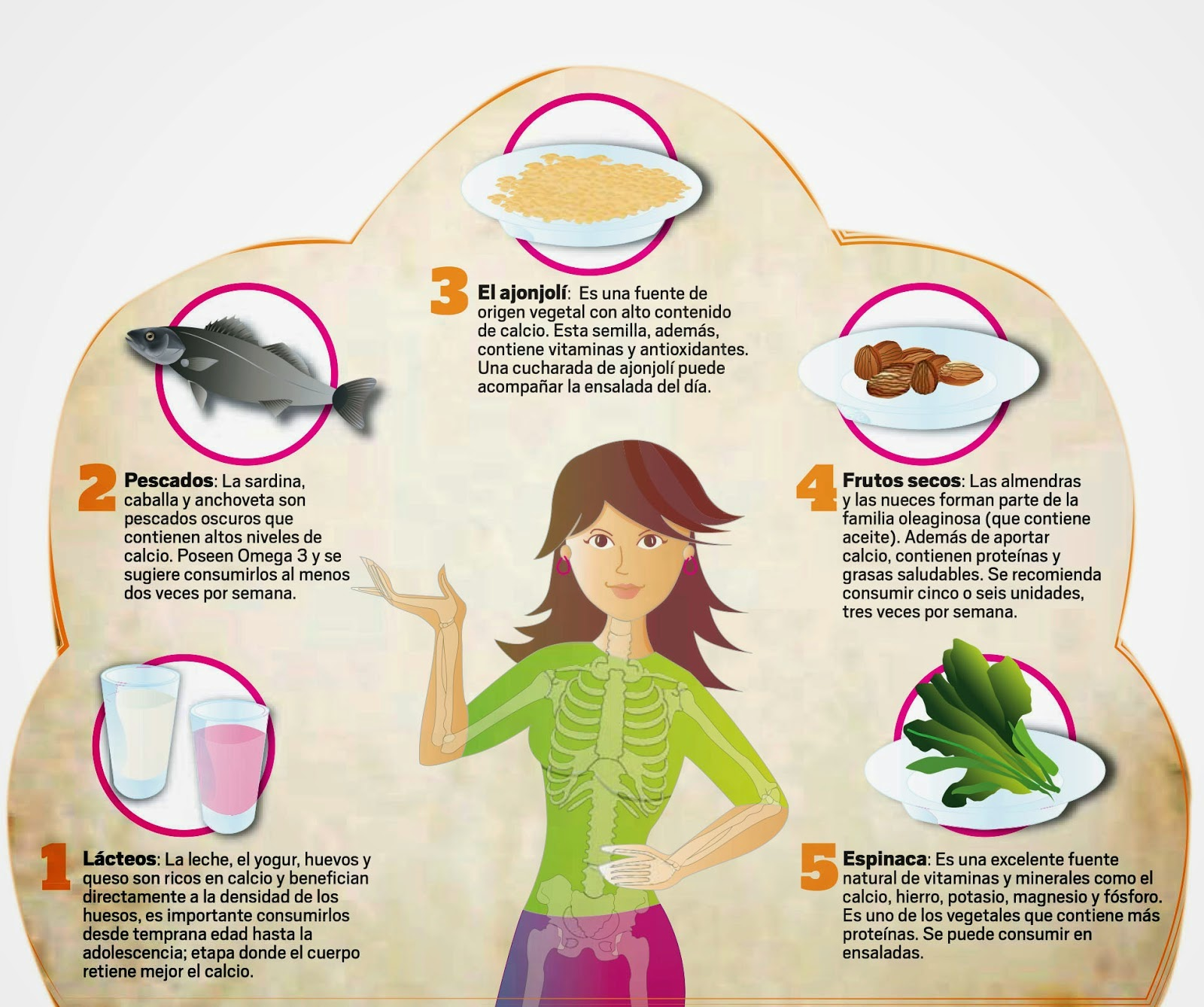 Cuaderno de salud y dietética. : Recopilación de consejos ...