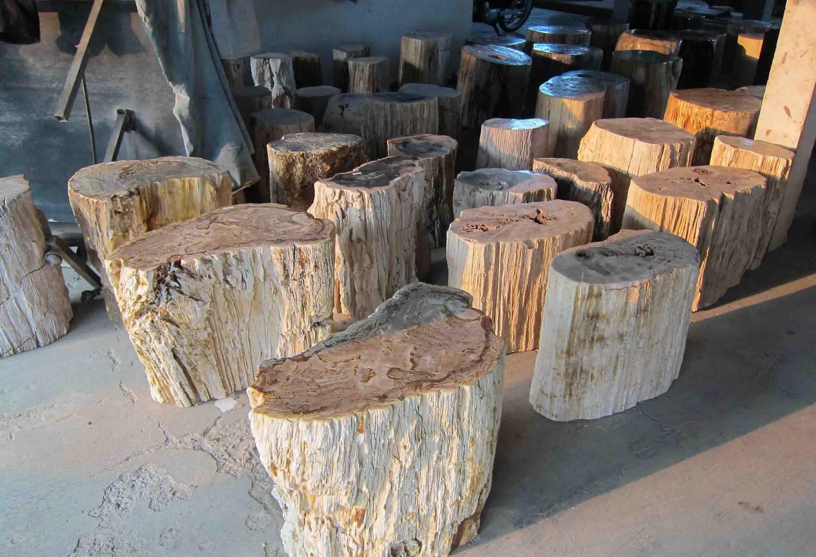 Petrified wood accessories indogemstone for Petrified wood furniture for sale