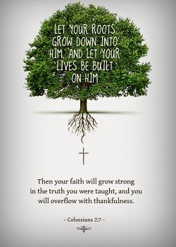 May you grow down deep...