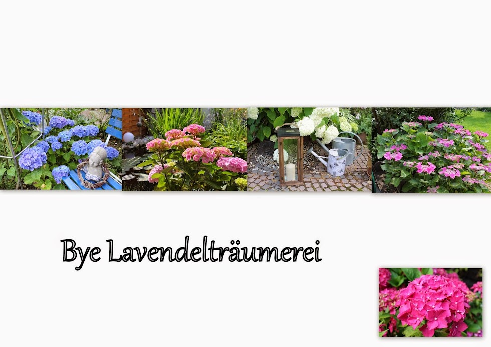 Lavendelträumerei