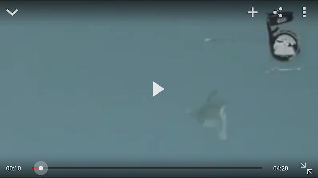 VIDEO GEMPAR Malaikat JATUHKAN Jet Yahudi Di Bumi Palestin