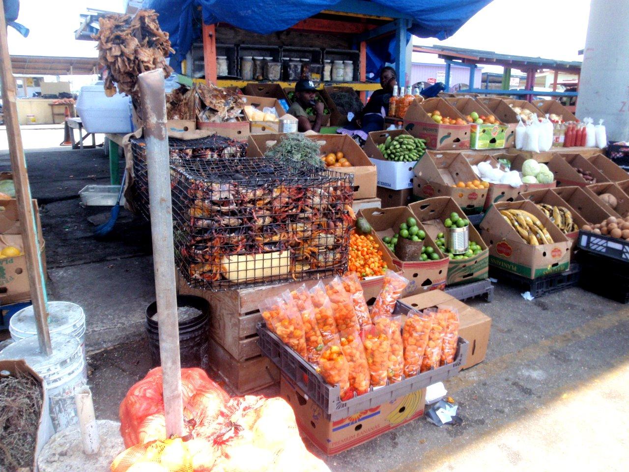 September song for Bahamas fish market
