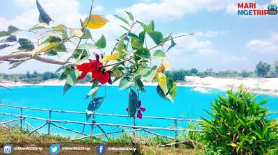 blue lake kaolin