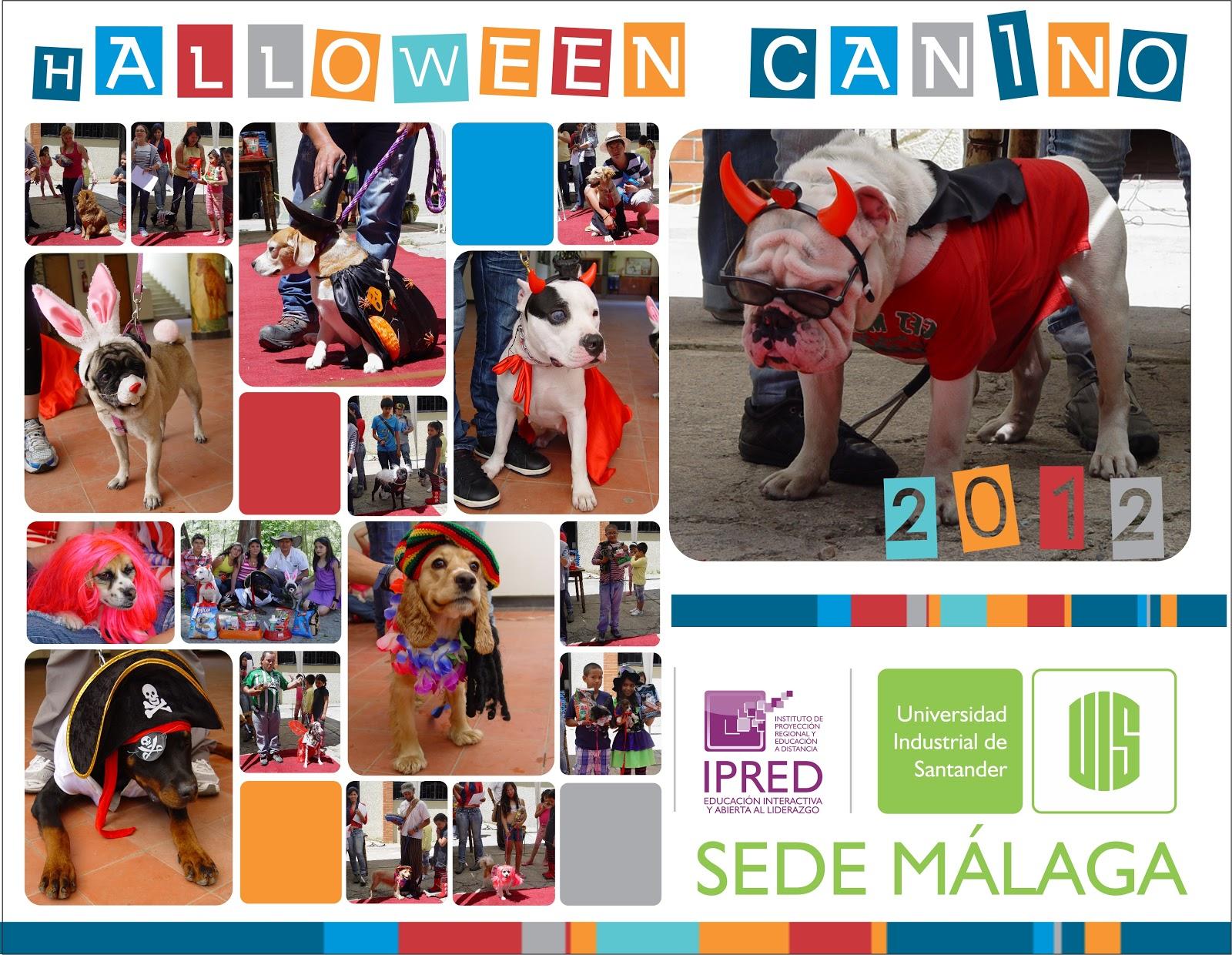 Sede uis m laga halloween canino 2012 concurso de for Oficina ing malaga