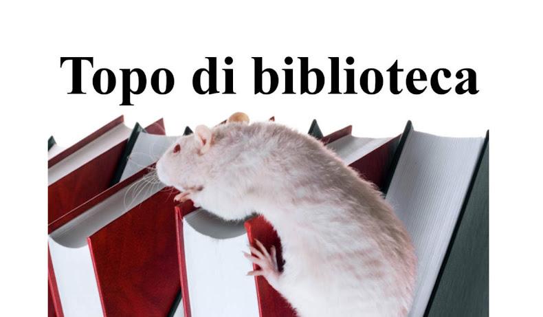 #blogintour