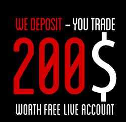 Бездепозитный бонус forex 2013