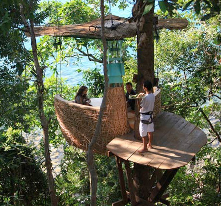 tree-top dining restaurant
