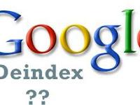 Apa Yang Harus Dilakukan Jika Blog Deindex Google ?