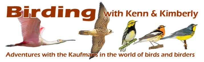 Birding with Kenn and Kimberly