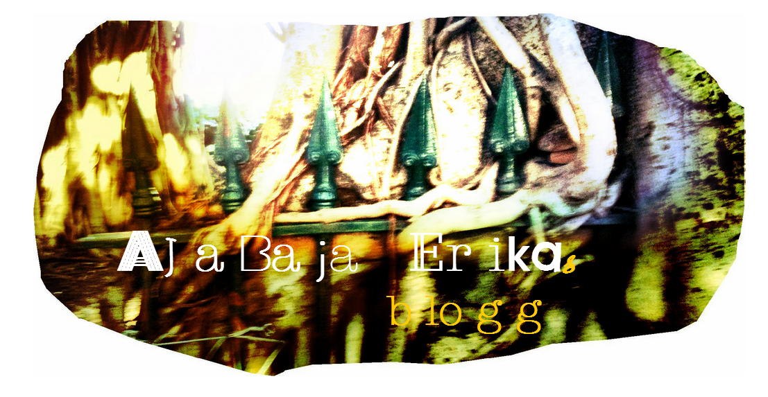 ajabajaerika.blogspot.se