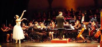 Bienvenidos a la Orquesta Sinfónica de Algeciras