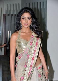 Shriya Saran Unseen Actress in Saree Photos