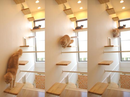 le design selon quan un arbre chat est ce utile. Black Bedroom Furniture Sets. Home Design Ideas