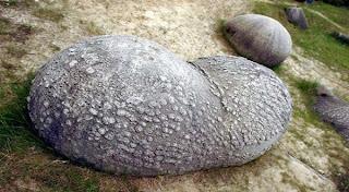 Batu-Batu Unik Ini Seolah-Olah Hidup.