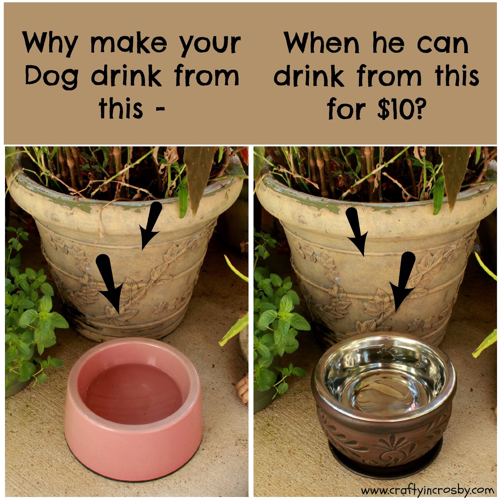 elevated dog bowl diy, dog bowl