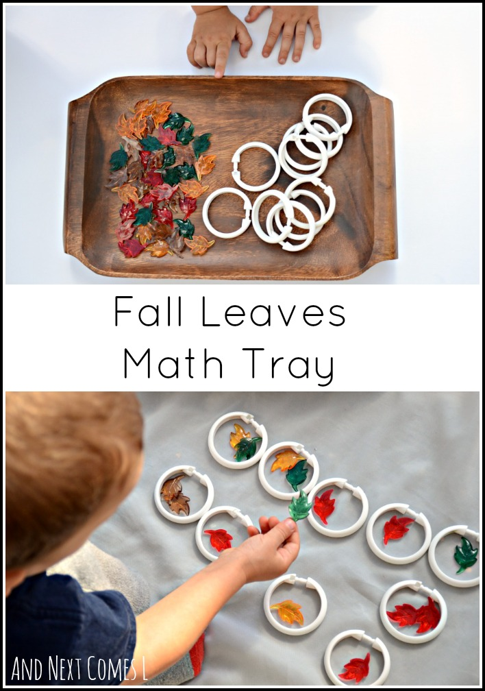 Simple playful math tray for kids with a fall theme that works on grouping and color sorting from And Next Comes L