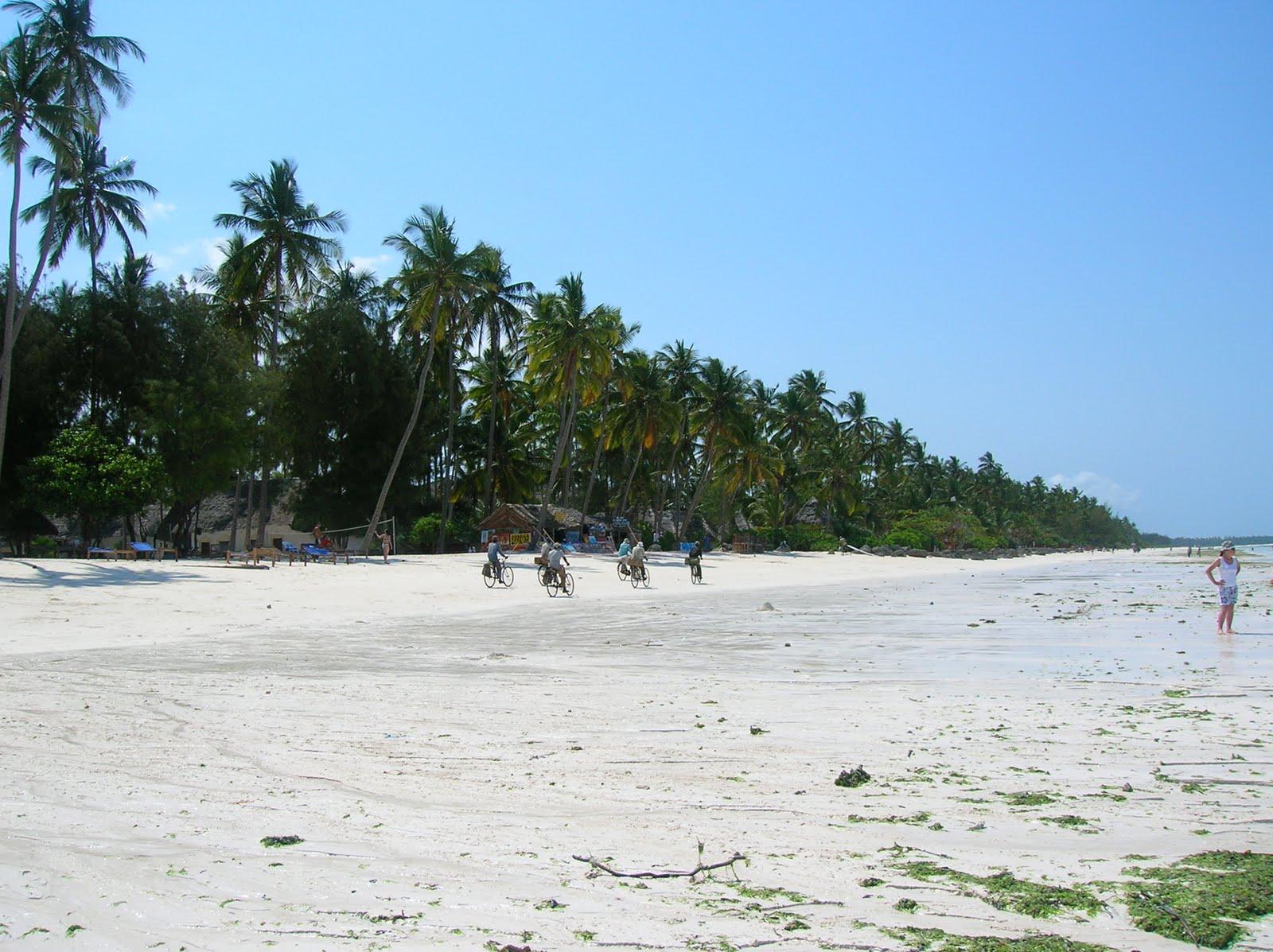 Tavolo Da Lavoro Per Zanzibar : Zanzibar tourisando non per caso