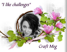 Craft Meg