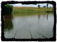 Wędkarstwo karpiowe - coś pięknego!