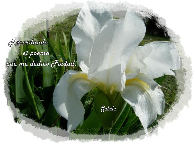 Recuerdo del Poema de Piedad