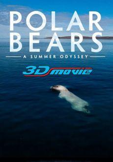 Gấu Bắc Cực: Cuộc Phiêu Lưu Mùa Hè