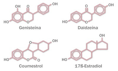 Estructuras químicas de tipos de fitoestrógenos y estrógeno