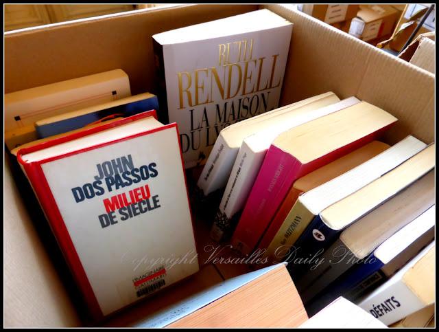 Désherbage des ouvrages Versailles 2015