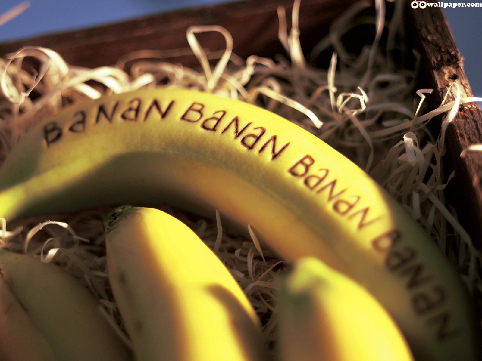 http://2.bp.blogspot.com/-BiupGkybbqg/TxkahaOSuiI/AAAAAAAAD0c/sgqqFAMmPaw/s1600/oo_food_fruit_banana.jpg