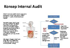 KONSEP INTERNAL KONTROL AUDIT