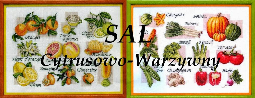 Sal cytrusowo-warzywny