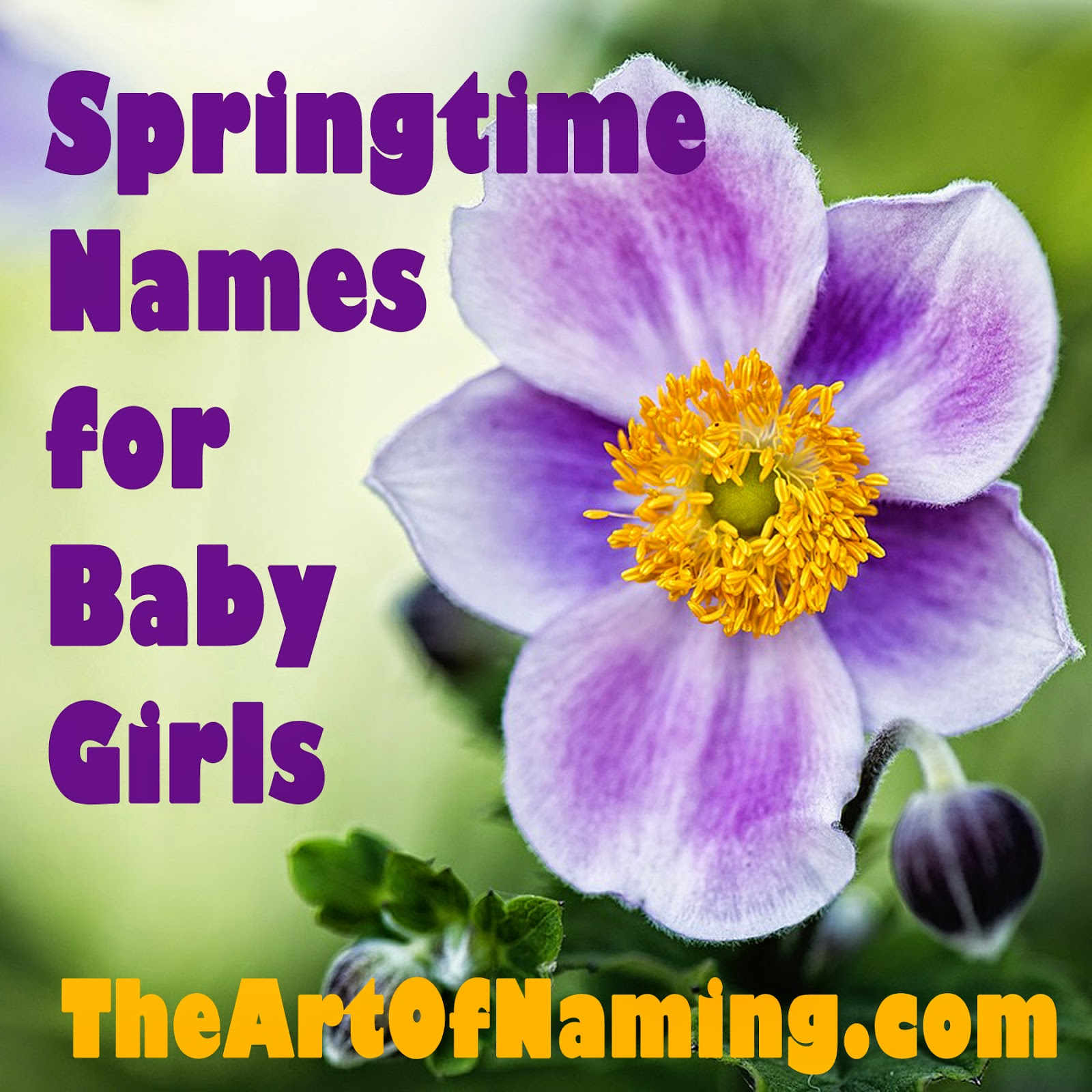 The Art Of Naming Blooming Springtime Names For Baby Girls