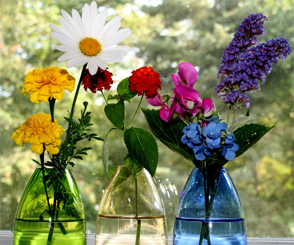 Eat live grow paleo indulge in fresh flowers for A lot of different flowers make a bouquet