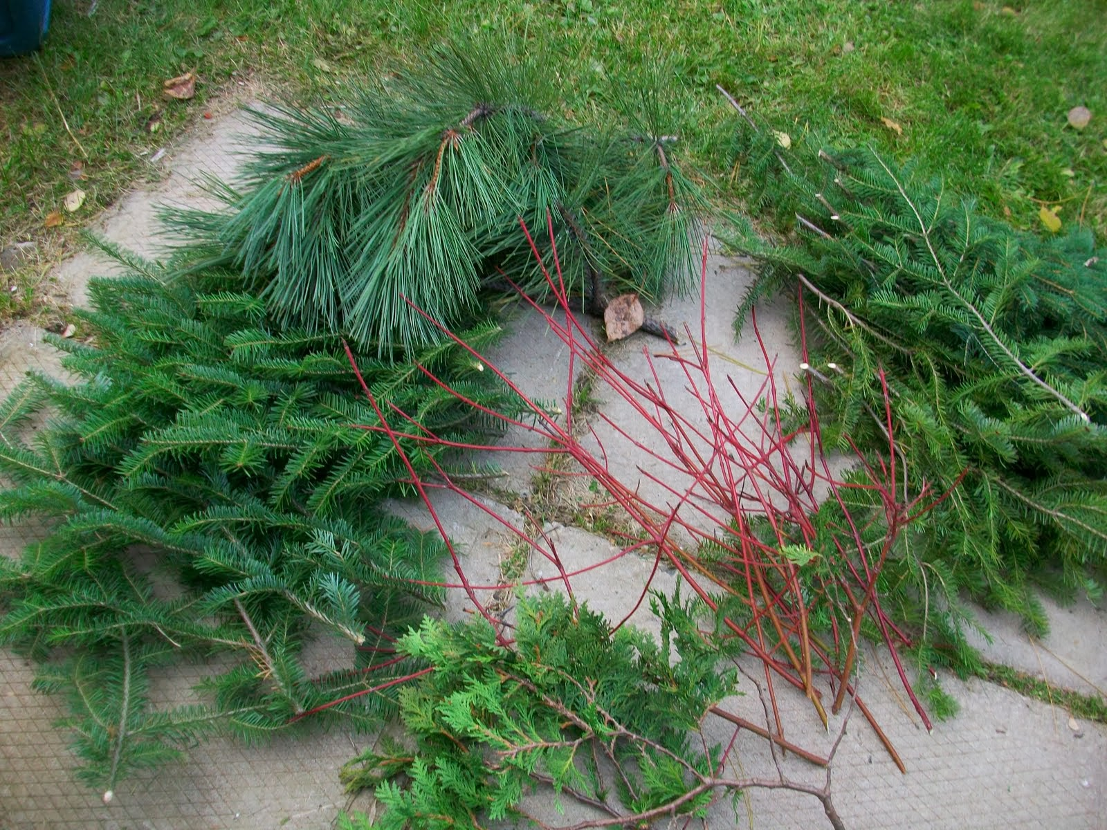 the domestic curator fresh vs faux greenery for christmas decorating - Fresh Christmas Greenery