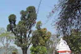 पोखराको विन्ध्यवासिनी मन्दिर