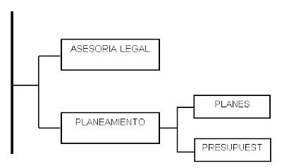 Cuales son los órganos de asesoria-Organimetria